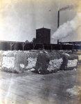 Cotton Compress Company